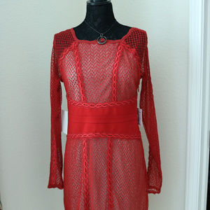 Red Dress with Mesh Overlay